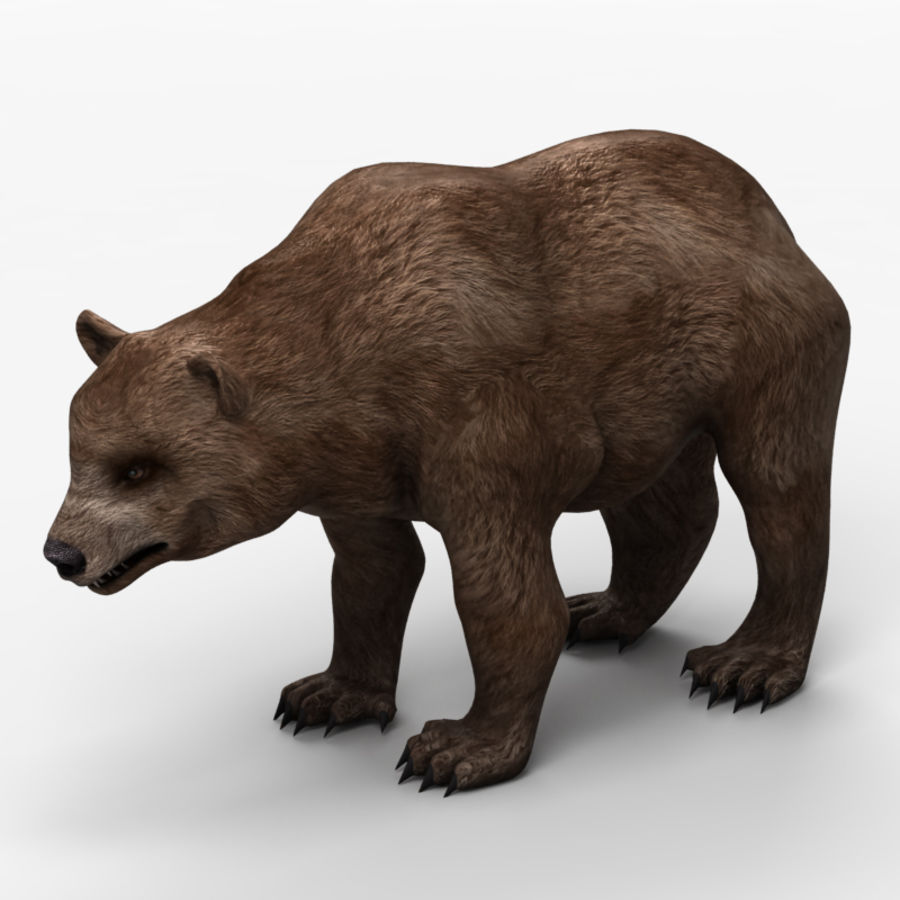 Bear Low Poly 1 royalty-free modelo 3d - Preview no. 1