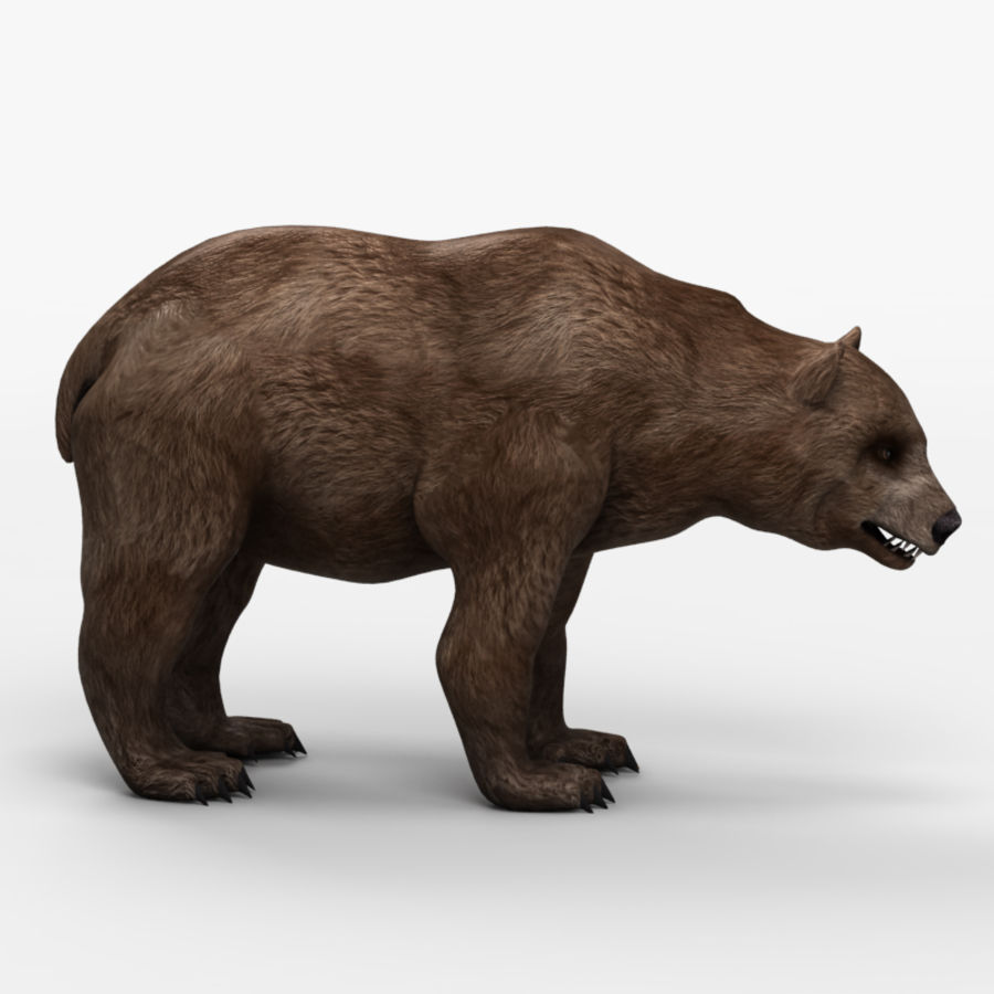 Bear Low Poly 1 royalty-free modelo 3d - Preview no. 4
