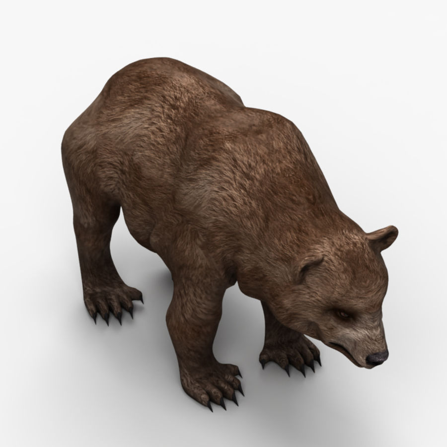 Bear Low Poly 1 royalty-free modelo 3d - Preview no. 3