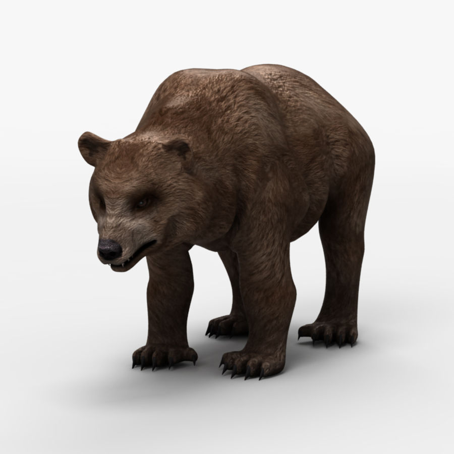 Bear Low Poly 1 royalty-free modelo 3d - Preview no. 2