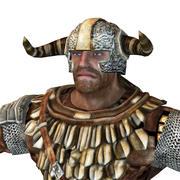 Warrior viking 3d model
