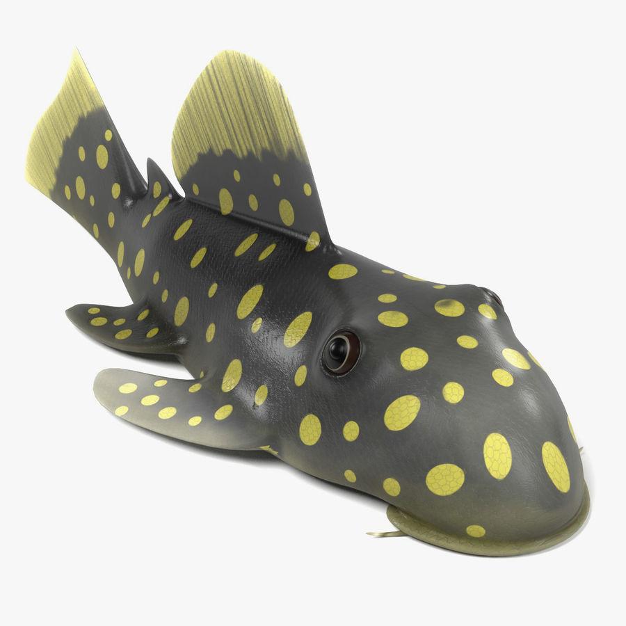 Peces de acuario royalty-free modelo 3d - Preview no. 2