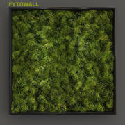 Fytowall n2 3d model