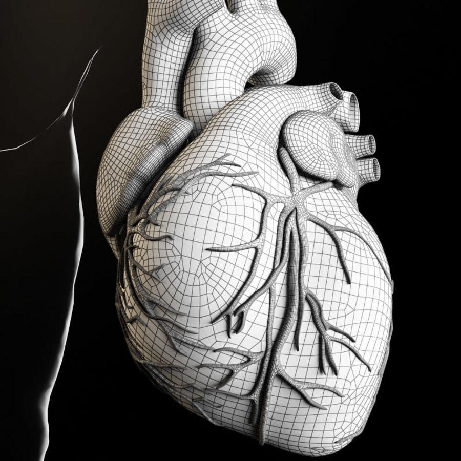 Serce i ciało royalty-free 3d model - Preview no. 3