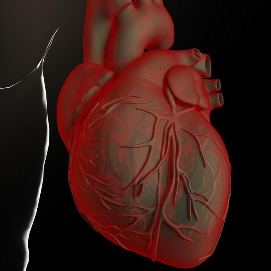 Serce i ciało royalty-free 3d model - Preview no. 2