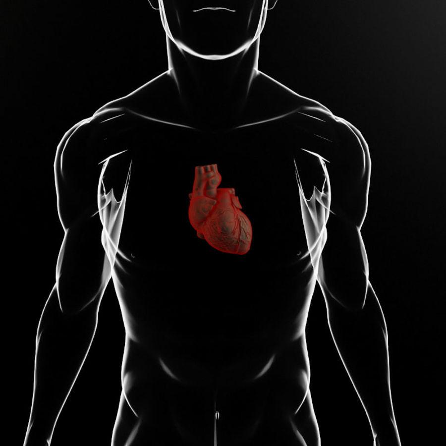 Serce i ciało royalty-free 3d model - Preview no. 4