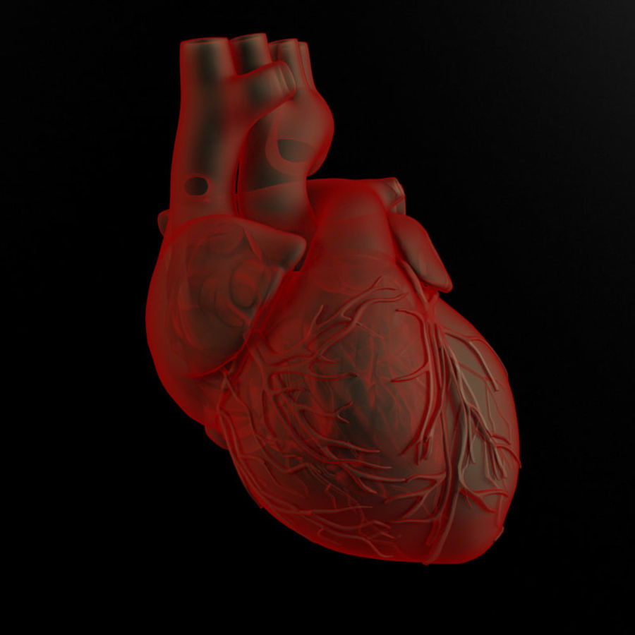 Serce i ciało royalty-free 3d model - Preview no. 1