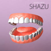 teeth set 3d model