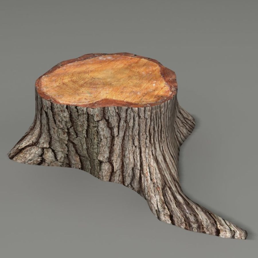 Tree Stump royalty-free 3d model - Preview no. 1