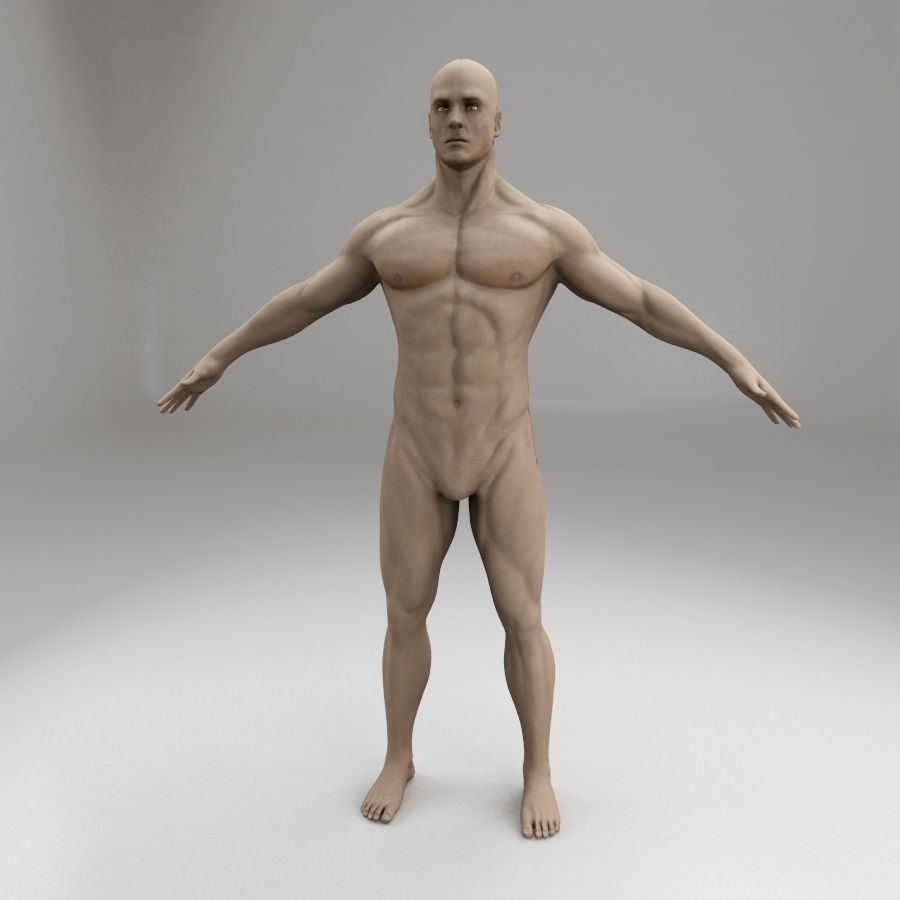 男性身体性格 royalty-free 3d model - Preview no. 2