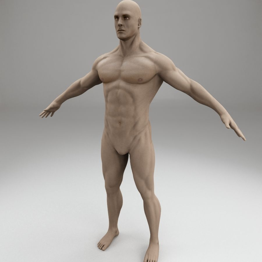 男性身体性格 royalty-free 3d model - Preview no. 1