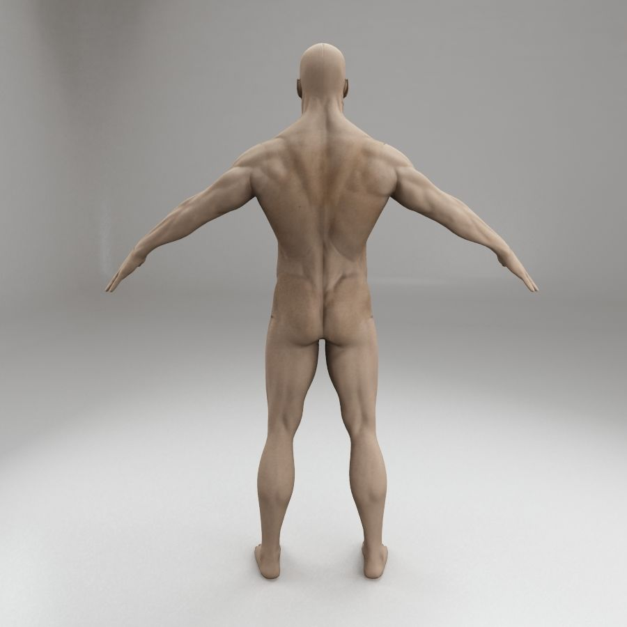 男性身体性格 royalty-free 3d model - Preview no. 5