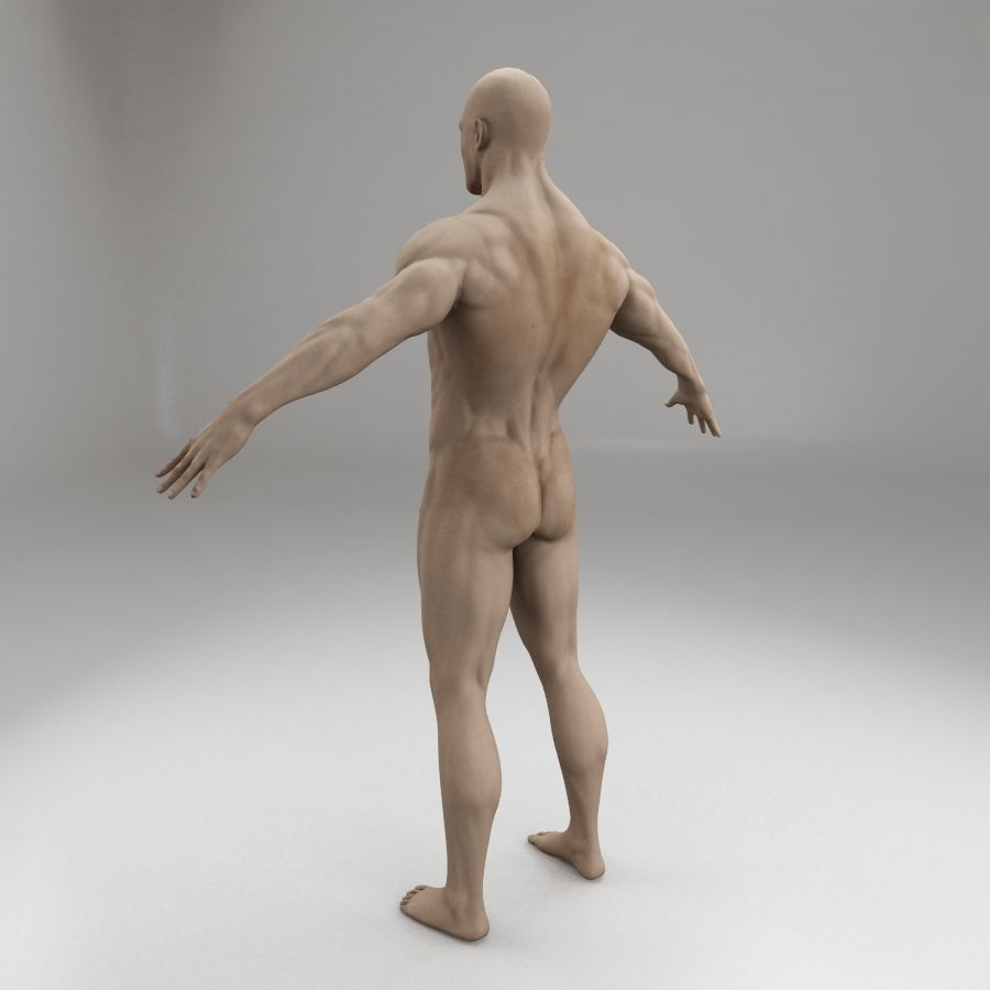 男性身体性格 royalty-free 3d model - Preview no. 4