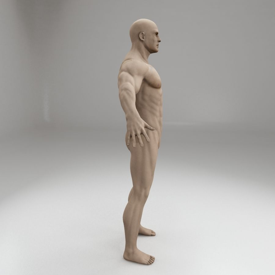 男性身体性格 royalty-free 3d model - Preview no. 6