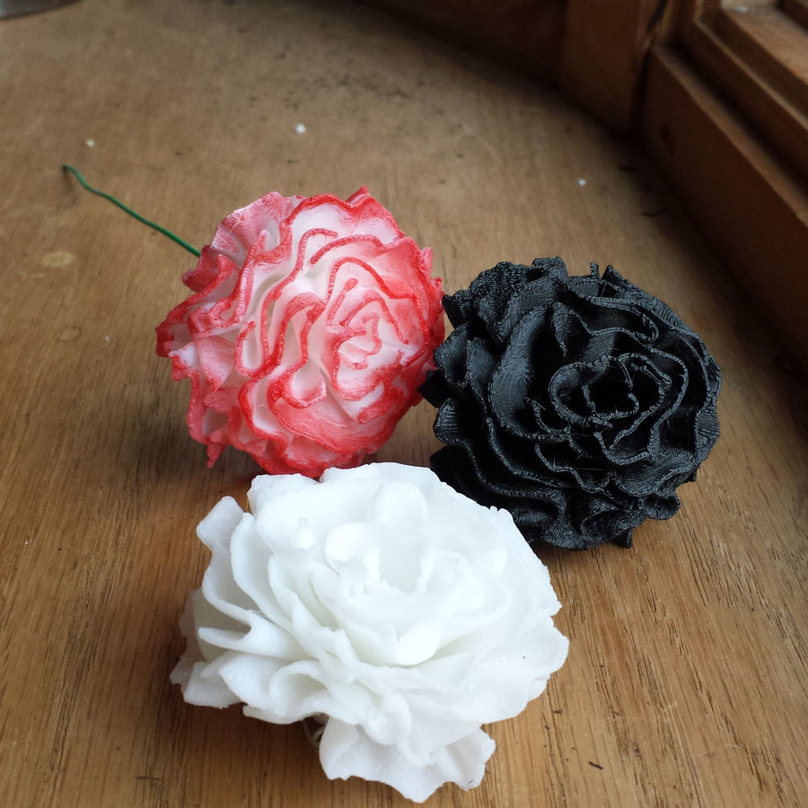 Carnation flower blossom 3D Printable royalty-free 3d model - Preview no. 3