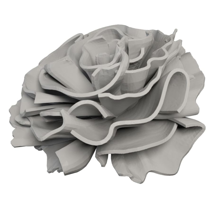 Carnation flower blossom 3D Printable royalty-free 3d model - Preview no. 5