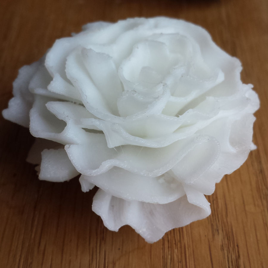 Carnation flower blossom 3D Printable royalty-free 3d model - Preview no. 2