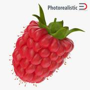 Fresh Ripe Raspberry 3d model