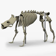 Scheletro di bestia 3d model