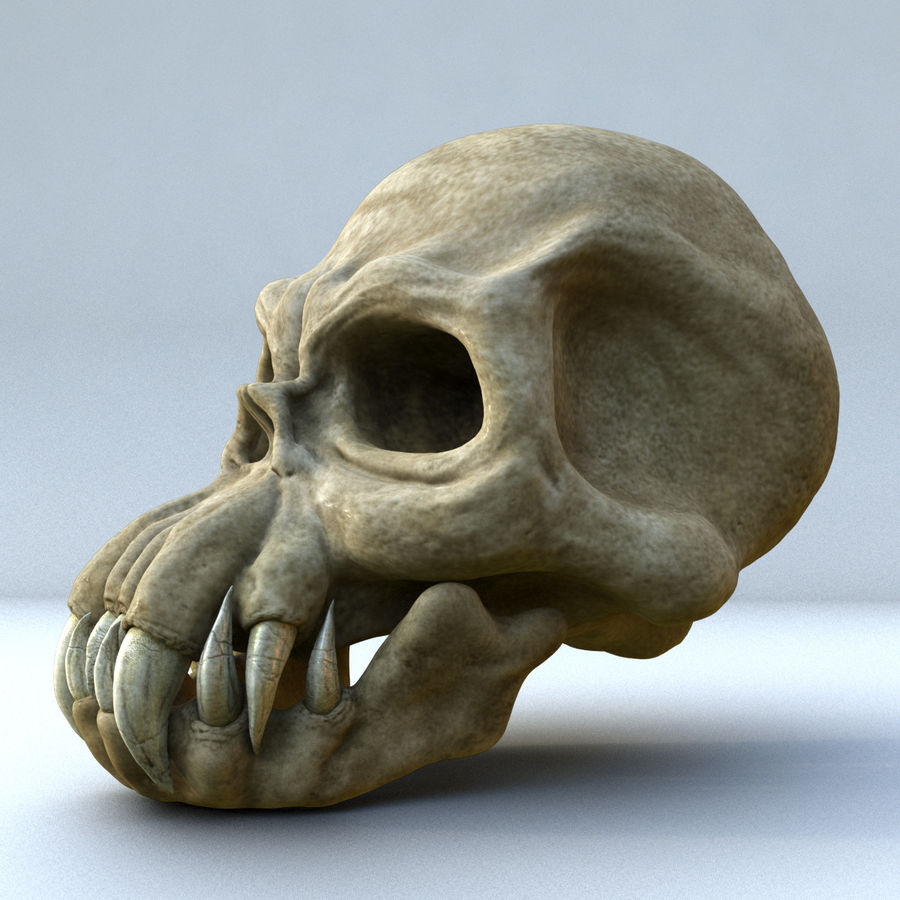 Monster Skull royalty-free 3d model - Preview no. 1