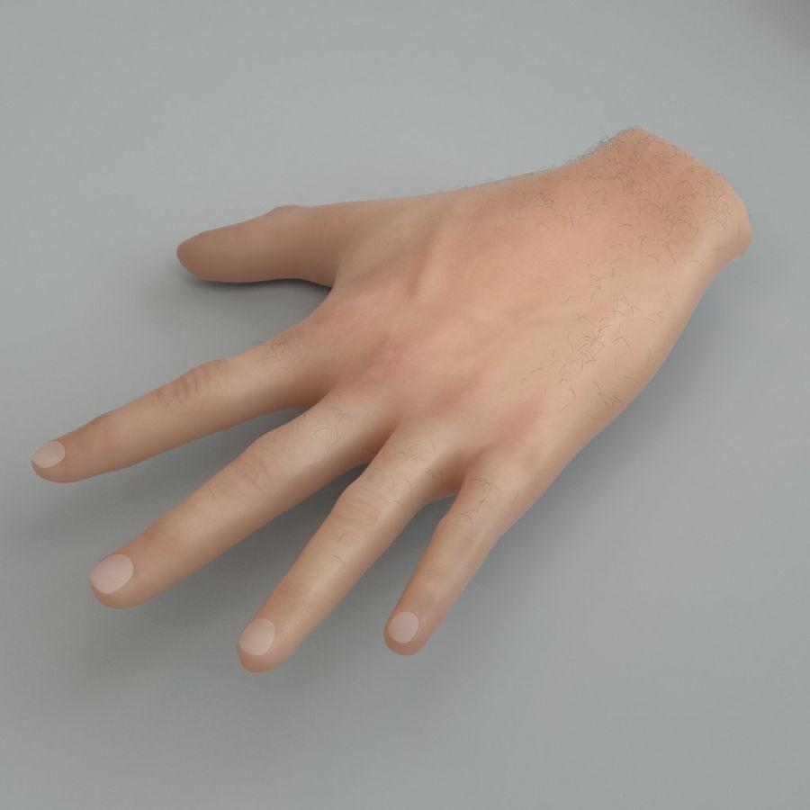 Menselijke hand royalty-free 3d model - Preview no. 2