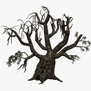 무서운 올리브 나무 3d model