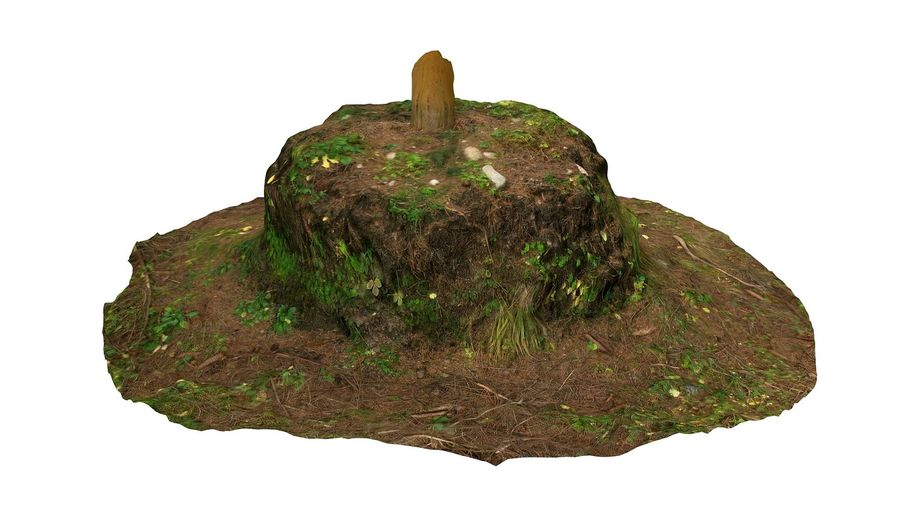 Tronco di tumulo di foresta royalty-free 3d model - Preview no. 4