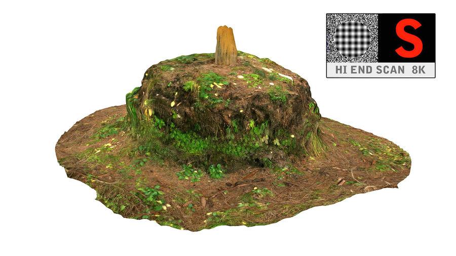 Tronco di tumulo di foresta royalty-free 3d model - Preview no. 8