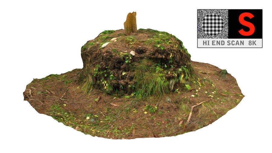 Tronco di tumulo di foresta royalty-free 3d model - Preview no. 3