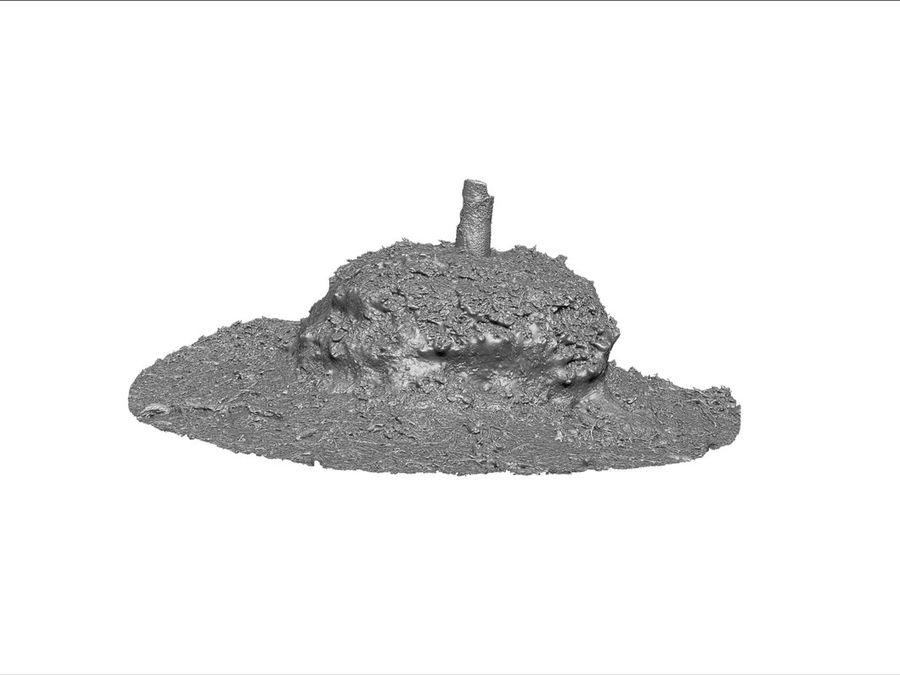 Tronco di tumulo di foresta royalty-free 3d model - Preview no. 7