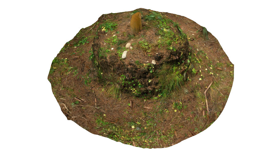 Tronco di tumulo di foresta royalty-free 3d model - Preview no. 5