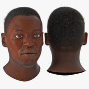 アフリカ系アメリカ人男性の髪の3 Dモデル 3d model