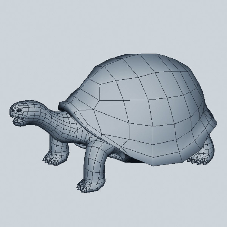 Tortuga royalty-free modelo 3d - Preview no. 6