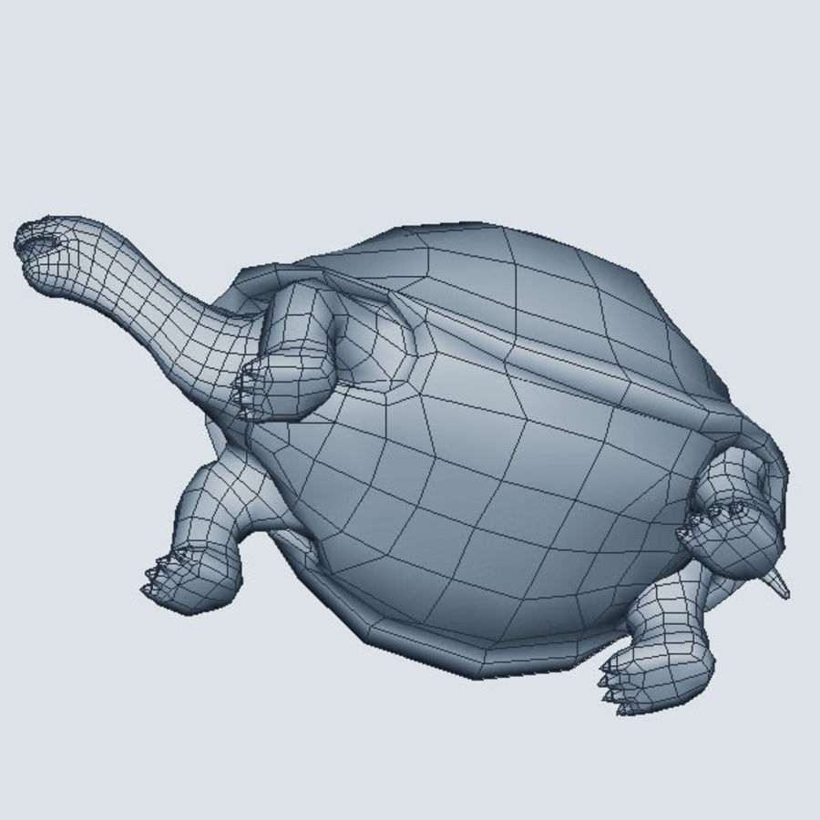 Tortuga royalty-free modelo 3d - Preview no. 7