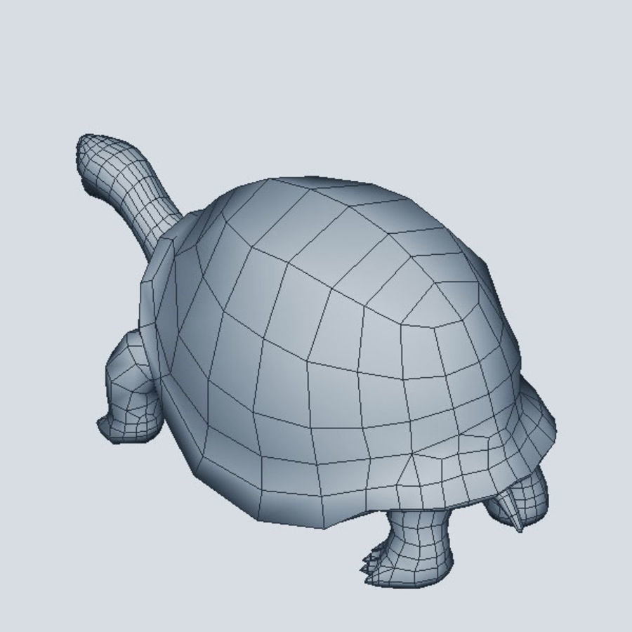 Tortuga royalty-free modelo 3d - Preview no. 8