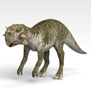 Psittacosaurus 3d model