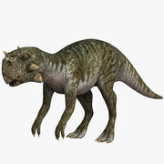 Psittacosaurus 3d model