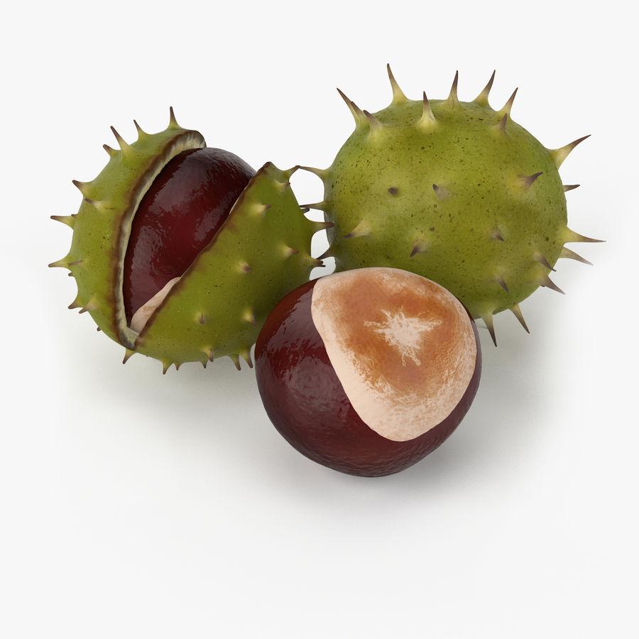 NICEMODELS Том 5 - Экзотические фрукты royalty-free 3d model - Preview no. 23