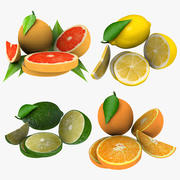 Citrus Fruit Collection 3d model
