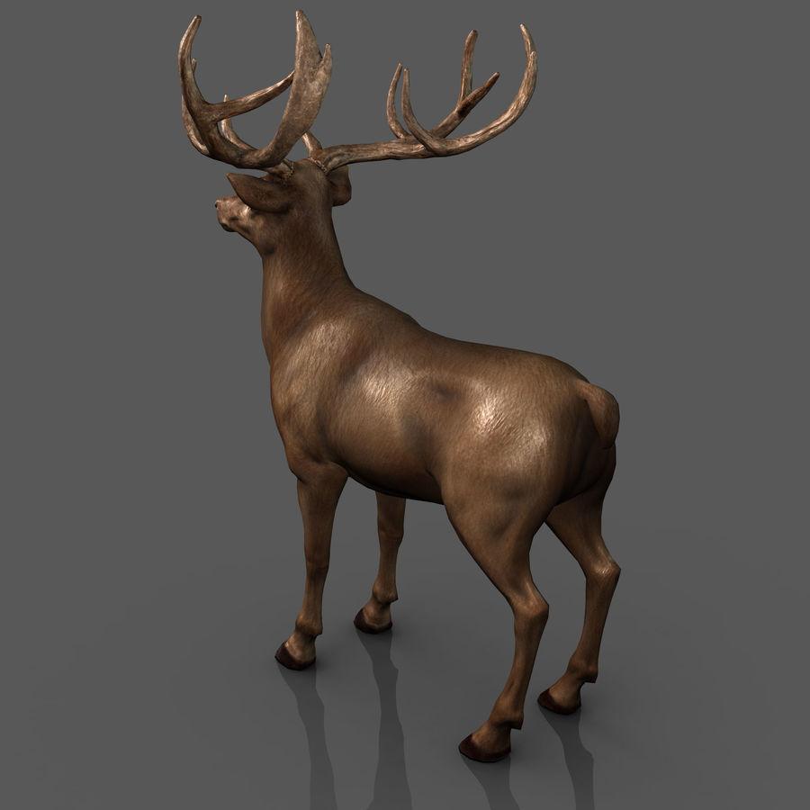 cervo adattato al sartiame royalty-free 3d model - Preview no. 7