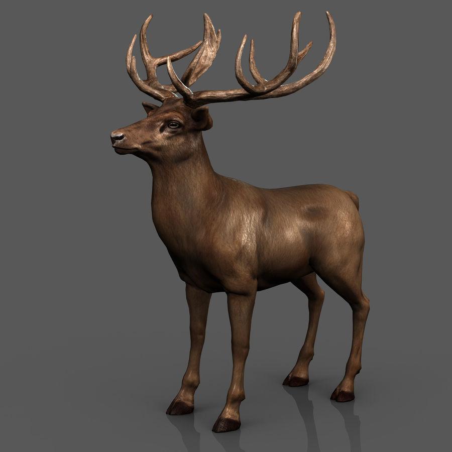 cervo adattato al sartiame royalty-free 3d model - Preview no. 8