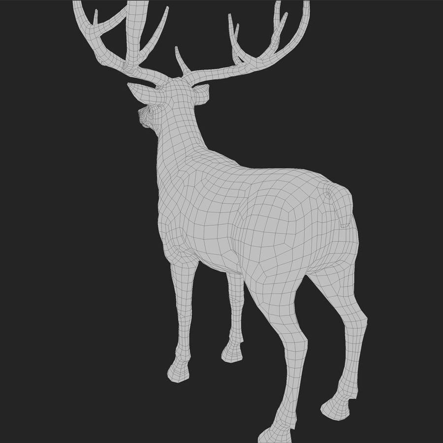 cervo adattato al sartiame royalty-free 3d model - Preview no. 4