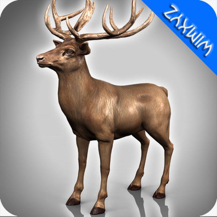 cervo adattato al sartiame royalty-free 3d model - Preview no. 1