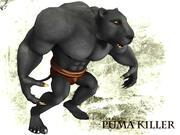 Puma Katili 3d model