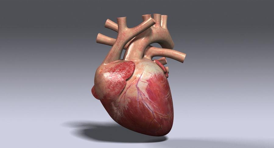 Menselijk hart royalty-free 3d model - Preview no. 2