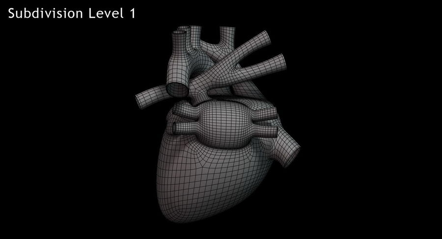 Menselijk hart royalty-free 3d model - Preview no. 15