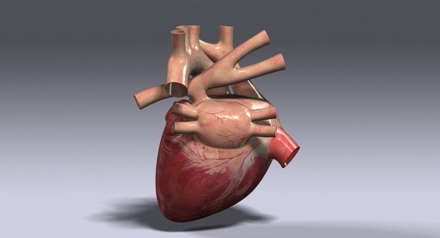 Menselijk hart royalty-free 3d model - Preview no. 6