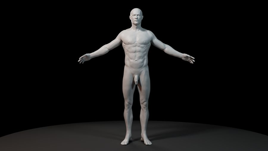 Anatomi modeli royalty-free 3d model - Preview no. 1