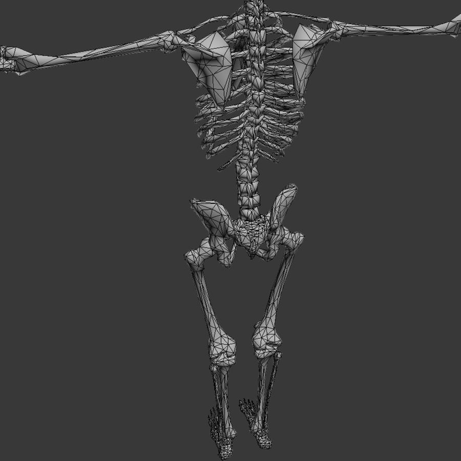 Skeleton royalty-free 3d model - Preview no. 11
