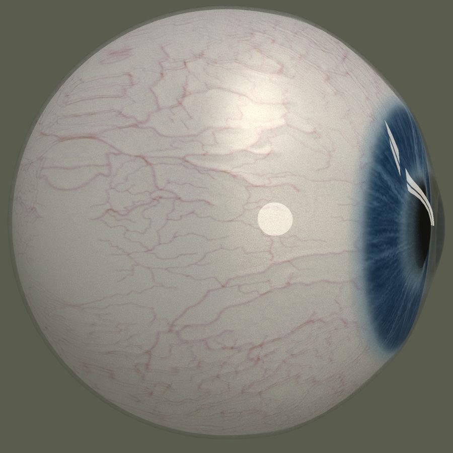 Человеческий глаз royalty-free 3d model - Preview no. 3